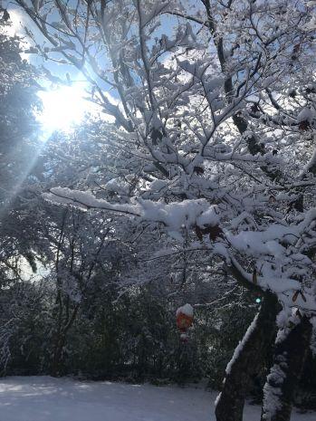 atgt snow